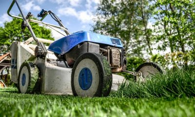 A lawnmower on the grass